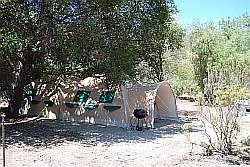 Expedition tent in de schaduw