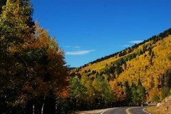 weg in Utah in herfstkleuren