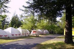 kamperen in de bossen