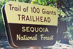 Trail of 100 giants shield
